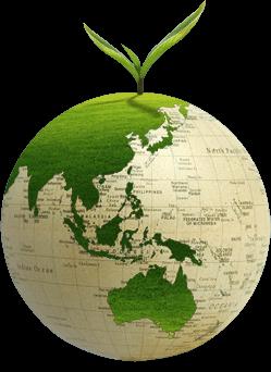 woodland sustainability insights sustainability in the